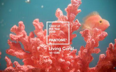 Living Coral é escolhida Cor do Ano 2019 da Pantone