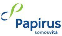 Papirus registra aumento na procura por papelcartão reciclado para embalagens